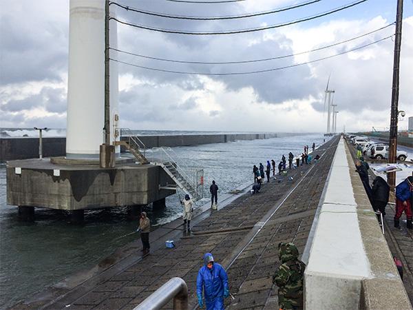 酒田北港水路のハタハタ釣り情報(2017.12.17)その2