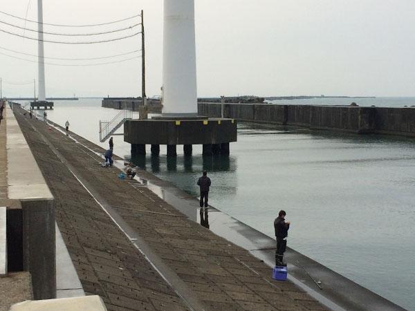酒田北港水路のハタハタ釣り情報(2017.12.24)