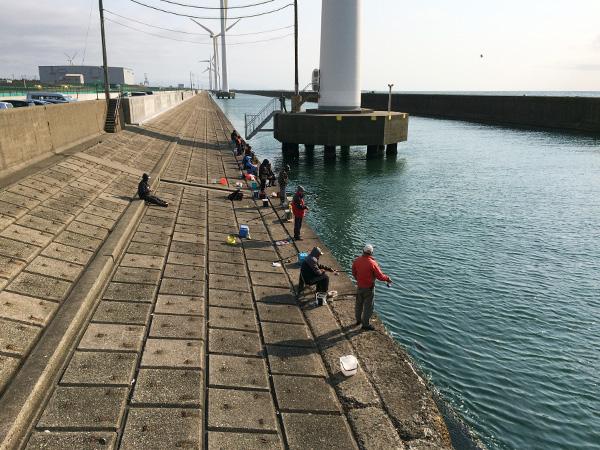 酒田北港水路のホッケ釣り