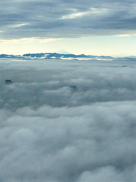 東京スカイツリー雲海と富士山