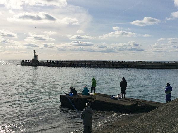 象潟漁港 ハタハタ釣り