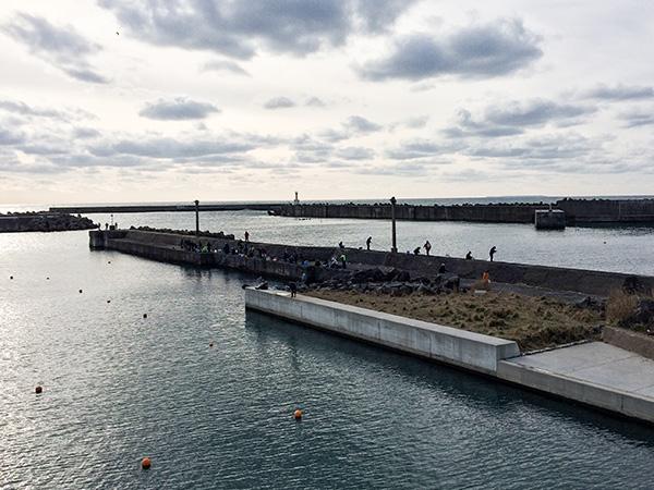 金浦魚港ハタハタ釣り