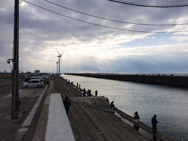 酒田北港水路2019.1.13