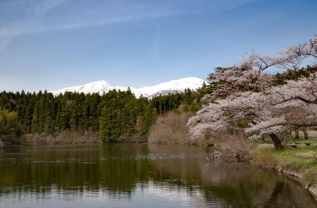 遊佐町宮山坂公園2019/04/30