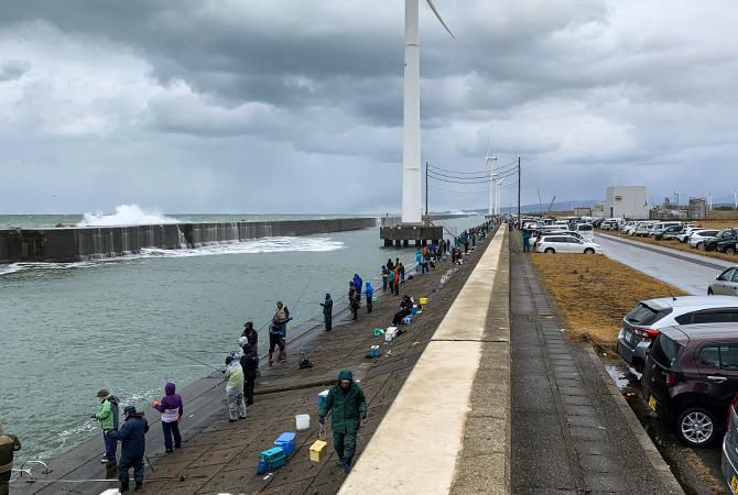 ハタハタ釣り北港水路(2020.12.18)