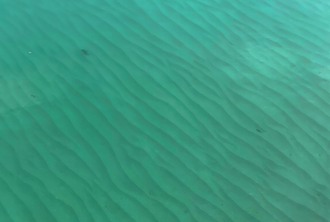 海底の砂紋。